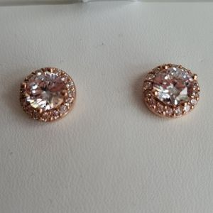 Charlotte & Lexi Rose Gold Earrings